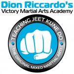 Victory Martial Arts Logo